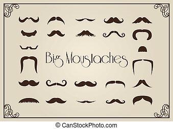 bigotes, colección