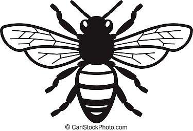 bij, illustratie, honing