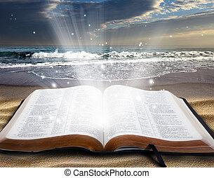 bijbel, op, strand