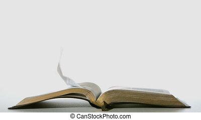 bijbel, pagina's, draaien, in de wind, op