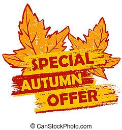 bijzondere , herfst, aanbod, met, bladeren, sinaasappel, en,...