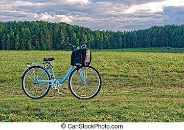 Bike in the field.