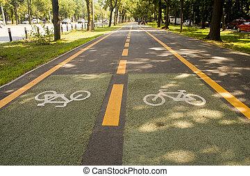 Bike lane - City bike lane along shady wooden street