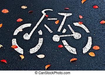 Autumn leaves on the bike path.
