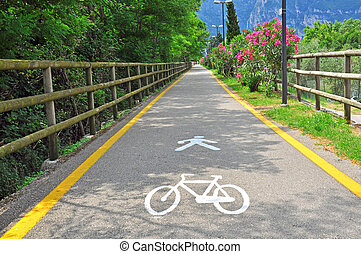 Bike path in the park