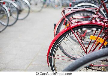 Bike rental service - Many bikes standing in bike stands, ...