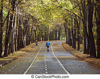 Bike ride along the magnificent autumn alley in Sokolniki Park. Moscow.