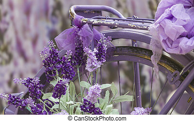 bike ride and lavender