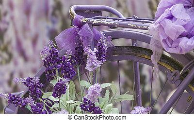 bike ride and lavender