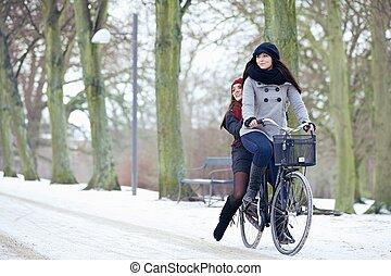 Bike Ride in the Winter Park