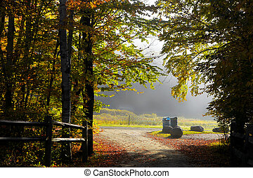 Bike trail in the park in autumn morning