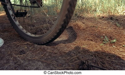 bike wheel spins and raises dust in the wood
