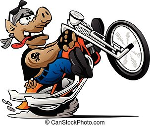 Biker hog popping a wheelie on a motorcycle cartoon vector illustration