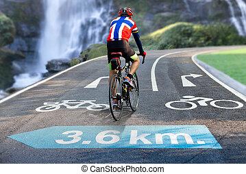 biker, jeżdżenie, droga znaczą, rowerowa dróżka