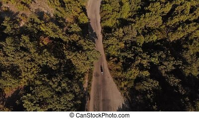 Aerial view of a biker driving on narrow country road