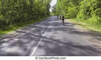 bikers on a summer workout on a forest road. sports,...