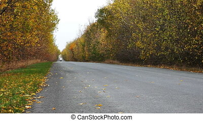 Bikers riding on the autumn road 2 - Bikers riding on the...