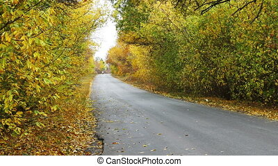 Bikers riding on the autumn road.