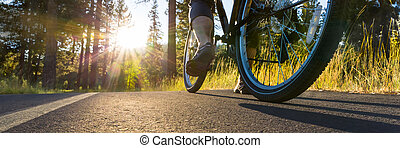 Biking - Bike on asphalt path illuminated by the sun.