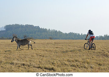 Biking in Mlilwane Nature Reserve