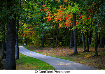 Biking trail through colorful autumn trees