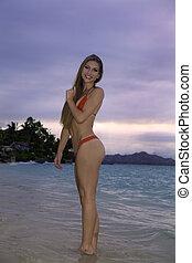 bikini, plage, girl