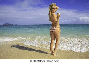 bikini, plage, hawaï, girl