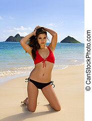 bikini, vrouw, jonge, hawaii