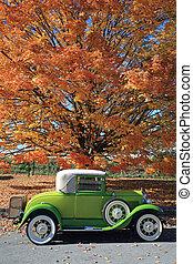 bil, gammal, färgrik, träd, falla