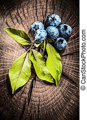 bilberries, verde sai, ligado, vindima, grunge, tábua