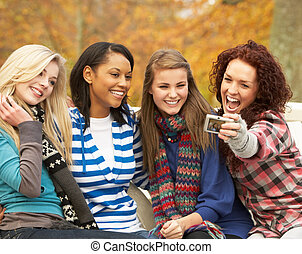 bild, jugendlich, gruppe, sitzen, mädels, nehmen, parkbank, vier, herbst, fotoapperat