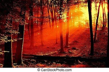 bild, landschaftsbild
