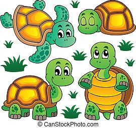 bild, mit, turtle, thema, 1