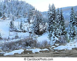bild, perfekt, snowscape