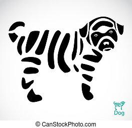 bild, vektor, hund