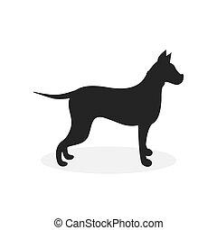 bild, weißes, labrador, hintergrund, vektor, hund