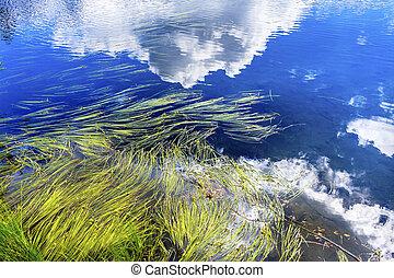bild, wolkenhimmel, reflexion, usa, washington, see, riede