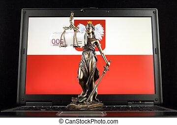 billet banque, justice, symbole, prise vue., laptop., zloty, drapeau, studio, polonais, droit & loi, pologne