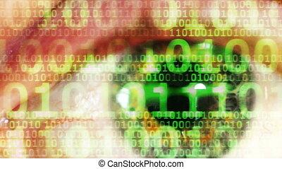 binaire, oeil, numérique