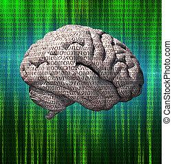 Binary brain