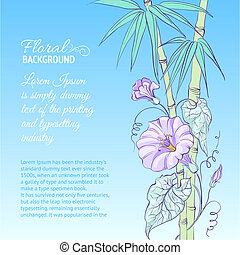Bindweed flower and bamboo. - Bindweed flower and bamboo on...