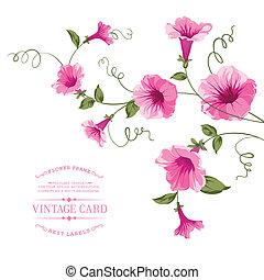 Bindweed flower on paper. - Bindweed flower for vintage card...