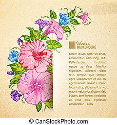 Bindweed flower on paper. Vector illustration.