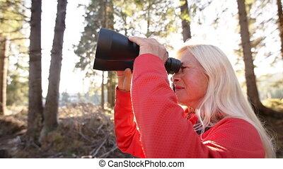 binoculars., wycieczkowicz, używając, starsza kobieta, ...