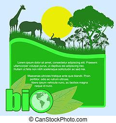 bio, 緑, ポスター