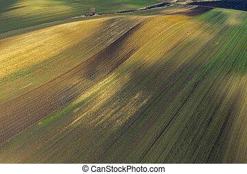 bio, aérien, industrie, basé, agriculture, vue