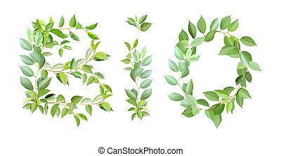 Word BIO made from branches with green leaves
