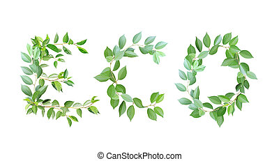 Word eco made from branches with green leaves