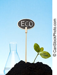 bio and organic laboratory