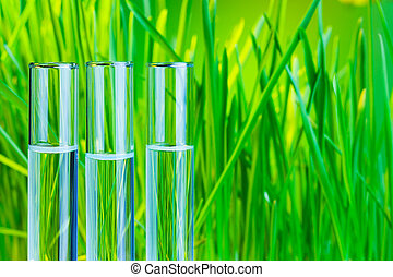 Bio chemistry test - Many glass test tubes with fresh green...